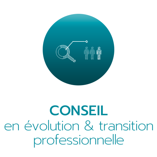 Conseil evolution strategie W - Solutions